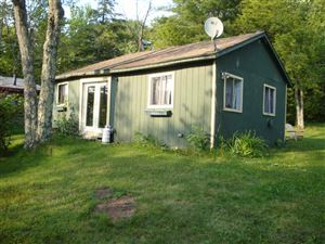 Photo of 94 Park Dr., Parksville, NY 12768-0000 (MLS # 48043)
