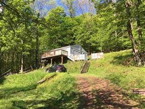 Photo of 70 Mountain Terrace, Rockland, NY 12758 (MLS # 49056)