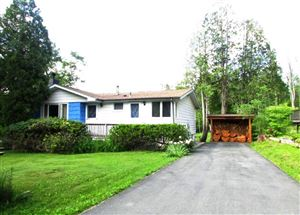 Photo of 9 Norman Drive, Mountain Dale, NY 12763 (MLS # 49059)