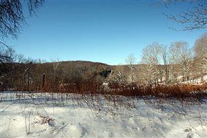 Photo of 0 Rt 97, Long Eddy, NY 12760 (MLS # 48152)