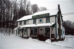 Photo of 3332/3334 State Route 52, White Sulphur Springs, NY 12787 (MLS # 48182)