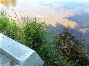Photo of 7 Goldring Drive, Highland Lake, NY 12743 (MLS # 48185)