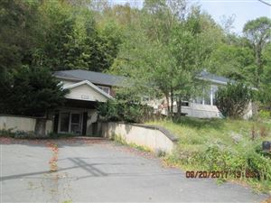Photo of 5300 STATE ROUTE 52, Jeffersonville, NY 12768 (MLS # 48203)