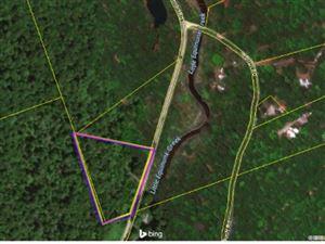 Photo of 00 Braman Road, Equinunk-PA, PA 18417 (MLS # 48218)