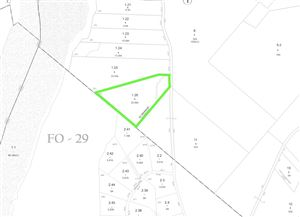 Photo of Plank Road, Forestburgh, NY 12777 (MLS # 48231)