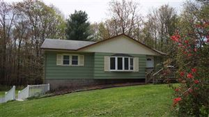 Photo of 615 State Route 17B, Monticello, NY 12701 (MLS # 46276)