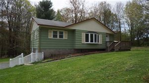 Photo of 615 State Route 17b, Monticello, NY 12701 (MLS # 46278)
