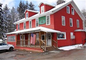 Photo of 553 County Route 94, Fremont Center, NY 12736 (MLS # 48303)