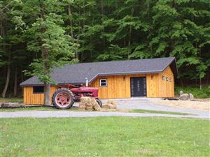 Photo of 4260 State Route 17b, Callicoon, NY 12723 (MLS # 48309)