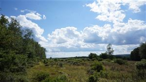 Photo of Lot 4 Farmstead, Neversink, NY 12765 (MLS # 47383)