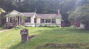 Photo of 53 W Oak, Smallwood, NY 12778 (MLS # 47389)