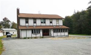 Photo of 367 Mohican Lake Road, Glen Spey, NY 12737 (MLS # 47416)