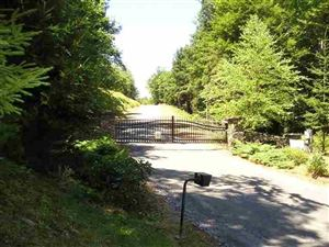 Photo of (4.4) Jaketown Road, Bethel, NY 12720 (MLS # 45455)