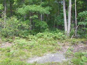 Photo of 37 Trillium Trail, Narrowsburg, NY 12764 (MLS # 43509)