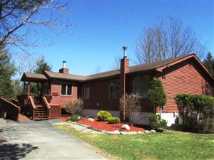 Photo of 53 Lake View Dr, Swan Lake, NY 12783 (MLS # 48585)