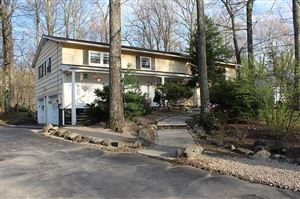 Photo of 15 Pond Lane, Rock Hill, NY 12775 (MLS # 48614)