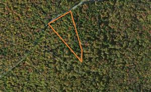 Photo of 0 S French Clearing, Forestburgh, NY 12777 (MLS # 46625)