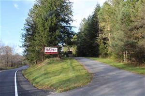 Photo of 870 Old Route 17, Livingston Manor, NY 12776 (MLS # 47650)