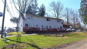 Photo of 3545 State Route 55, Bethel, NY 12720 (MLS # 48663)