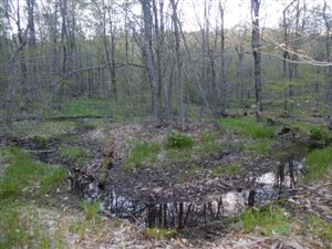 Photo of N/A Gulf Rd., Roscoe, NY 12776 (MLS # 47698)