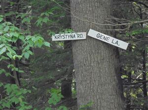 Photo of Lot 25 Krystyna, Bethel, NY 12720 (MLS # 46699)
