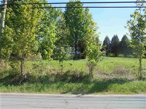 Photo of Lot 5 W Lake Street, Liberty, NY 12754 (MLS # 45702)