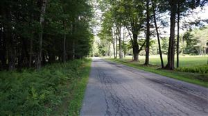 Photo of (10.13) Perry Road, Bethel, NY 12720 (MLS # 45708)