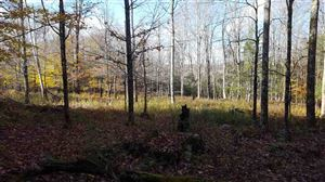 Photo of 0 Brisco Rd, Jeffersonville, NY 12748 (MLS # 47714)