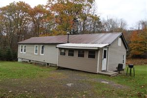 Photo of 131 taylor road, Mountain Dale, NY 12763 (MLS # 47733)
