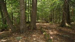 Photo of *00 PINE GROVE, White Lake, NY 12786 (MLS # 45743)