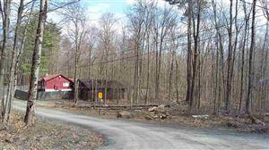 Photo of 12 Glenwild Drive, Smallwood, NY 12720 (MLS # 47755)