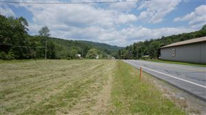 Photo of (Lot 5) State Route 55, Neversink, NY 12765 (MLS # 41798)