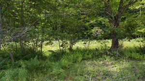 Photo of (Lot 2) State Route 55, Neversink, NY 12765 (MLS # 41799)