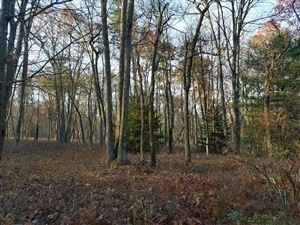 Photo of 18-2-6 Main Black Forest Rd, Glen Spey, NY 12737 (MLS # 47806)