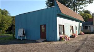 Photo of 4912 State Route 52, Jeffersonville, NY 12748 (MLS # 47810)