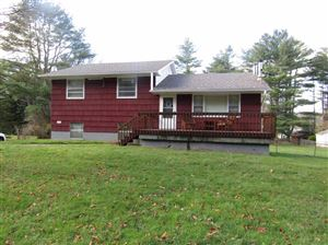 Photo of 2739 State Route 42, Forestburgh, NY 12777 (MLS # 47813)