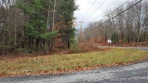 Photo of Maplewood Avenue Tr 124, Loch Sheldrake, NY 12759 (MLS # 47818)