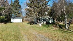 Photo of 1275 Briscoe, Swan Lake, NY 12783 (MLS # 47848)