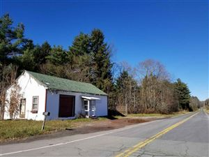 Photo of 226 State Route 17B, Monticello, NY 12701 (MLS # 47850)