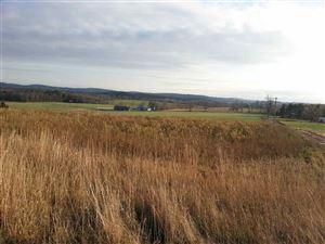 Photo of 321 Swiss Hill Road, Jeffersonville, NY 12748 (MLS # 47855)