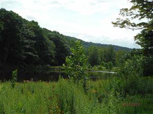 Photo of 22370 County Highway 17, Roscoe, NY 12776 (MLS # 48875)
