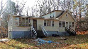 Photo of 60 Haddock Rd, Monticello, NY 12701 (MLS # 47886)