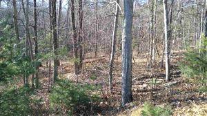 Photo of Lot 53 Dry Brook Rd, Barryville, NY 12719 (MLS # 47892)