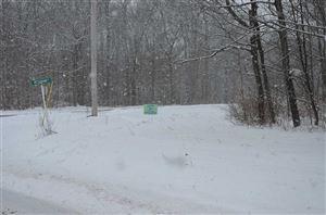 Photo of 00 Weissman Rd, Callicoon, NY 12723-0000 (MLS # 47897)