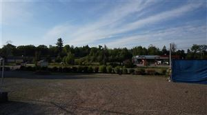 Photo of 1319 State Route 17B, White Lake, NY 12786 (MLS # 48910)