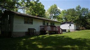 Photo of 1438 NYS HWY 17B, White Lake, NY 12786 (MLS # 47921)
