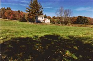 Photo of 2715 State Route 17B, Cochecton, NY 12726 (MLS # 45926)