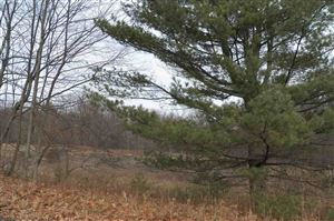 Photo of (1-1-1.2) Painter Hill Rd, Mountain Dale, NY 12763 (MLS # 47927)