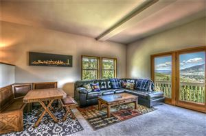 Photo of 170 Fawn Court #170, SILVERTHORNE, CO 80498 (MLS # S1014019)