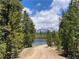 Photo of TBD POND Drive, FAIRPLAY, CO 80440 (MLS # S1014046)